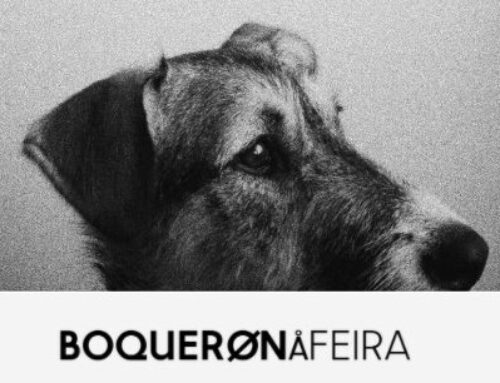Fotografías solidarias de Boquerón á Feira