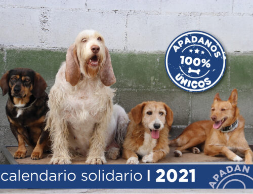 A LA VENTA LA LOTERÍA DE NAVIDAD Y CALENDARIOS DE 2021